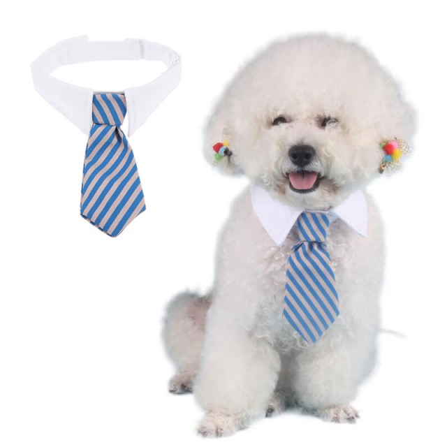 Воротничок с галстуком для кошек и небольших собак