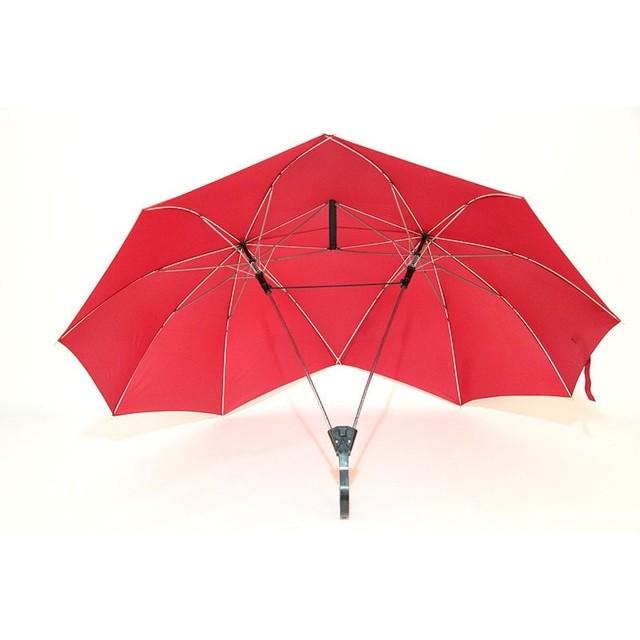двойной зонт для прогулок с собакой